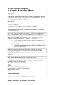 Animals Piece by Piece Lesson Plan