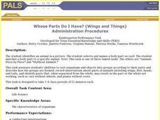Whose Parts Do I Have? (Wings and Things) Lesson Plan