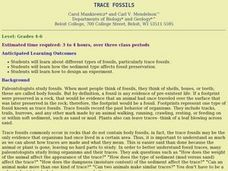 Science:  Making Trace Fossils Lesson Plan