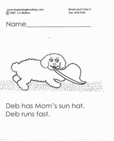 Beginning Reading: Zac and Deb Lesson Plan