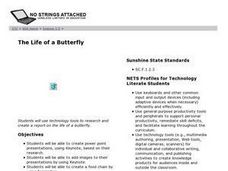 The Life of a Butterfly Lesson Plan
