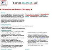 Estimation and Pattern Discovery Lesson Plan