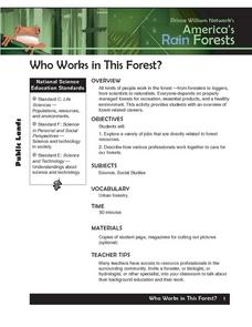 Who Works in This Forest? Lesson Plan