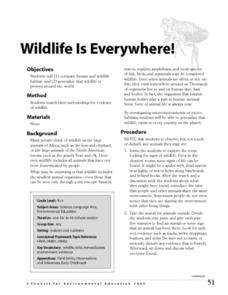 Wildlife is Everywhere! Lesson Plan