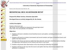 Beneficial Bug Scavenger Hunt Lesson Plan