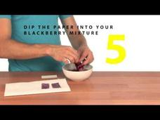 Berry pH Paper Video