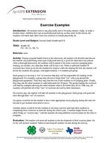 Exercise Examples Lesson Plan