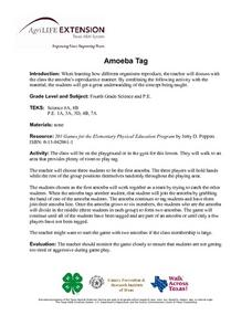 Amoeba Tag Lesson Plan
