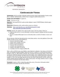 Cardivascular Fitness Lesson Plan