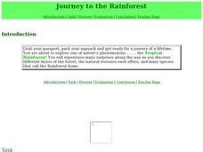 Journey to the Rainforest Lesson Plan