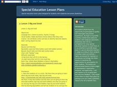 Big and Small Lesson Plan