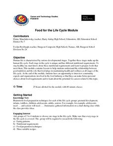 Food for the Life Cycle Module Lesson Plan