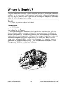 Where is Sophie? Lesson Plan