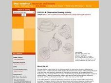 Still Life & Observation Drawing Activity Lesson Plan