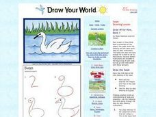 Drawing Birds Lesson Plan