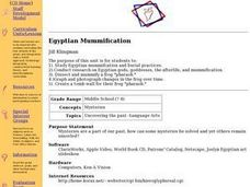 Egyptian Mummification Lesson Plan