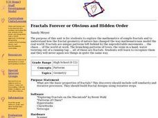 Fractals Forever or Obvious and Hidden Order Lesson Plan