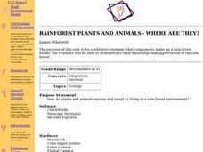 Rainforest Plants and Animals -- Where Are They? Lesson Plan