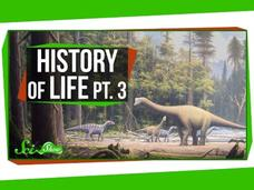 A Brief History of Life: Dinosaur Time! Video
