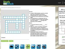 Biology Crossword Puzzle 4 Interactive