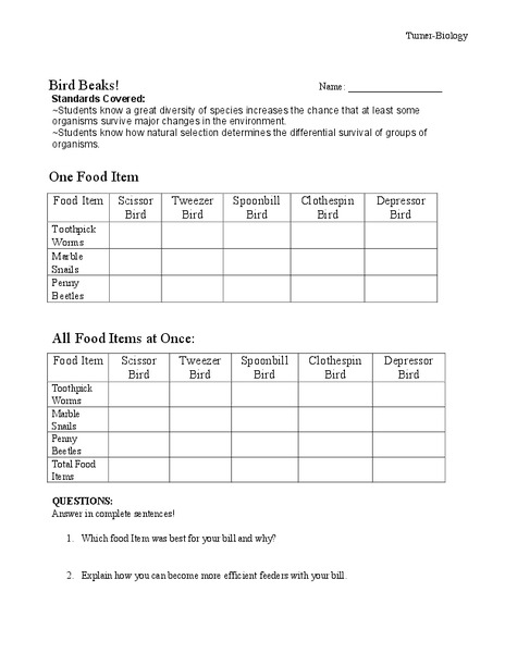 Adaptations Bird Beak Worksheets Reviewed by Teachers