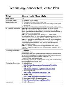 Give a Hoot About Owls Lesson Plan