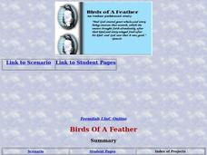 Birds of A Feather Lesson Plan