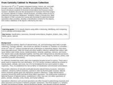 From Curiosity Cabinet to Museum Collection Lesson Plan