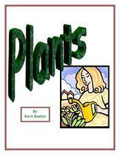 How Does A Seed Become A Plant? Lesson Plan