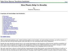 How Plants Help Us Breathe Lesson Plan