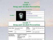 Drug and Alcohol Prevention Lesson Plan