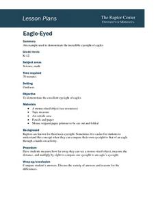 Eagle-Eyed Lesson Plan