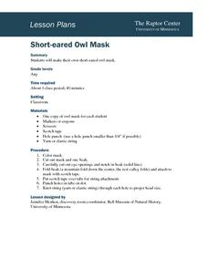 Short-Eared Owl Mask Lesson Plan