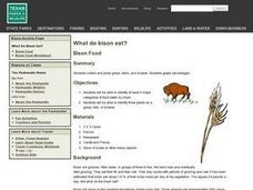 What do Bison Eat? Lesson Plan