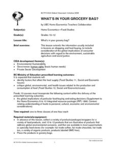 What's In Your Grocery Bag? Lesson Plan