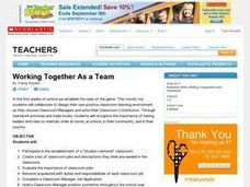 Working Together As a Team Lesson Plan