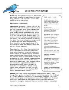 Coqui Frog Camouflage Lesson Plan