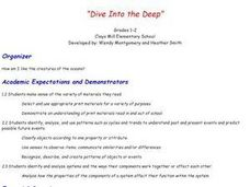 Dive Into The Deep Lesson Plan