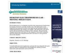 DESKTOP ELECTROPHORESIS LAB - MOVING MOLECULES Lesson Plan