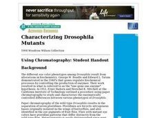 Characterizing Drosophila Mutants Lesson Plan