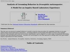 Analysis of Grooming Behavior in Drosophila melanogaster Lesson Plan