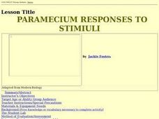 PARAMECIUM RESPONSES TO STIMIULI Lesson Plan