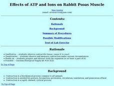 Effects of ATP and Ions on Rabbit Psoas Muscle Lesson Plan