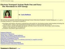 Electron Transport System Made Fun and Easy: Lesson Plan
