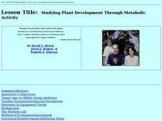 Studying Plant Development Through Metabolic Activity Lesson Plan