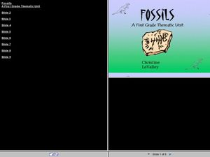 Fossils! Lesson Plan