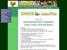 Understanding About Vegetables, Fruits, Grains, Nuts and Beans Lesson Plan