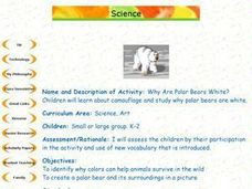 Why Are Polar Bears White? Lesson Plan