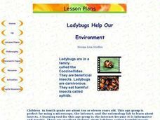 Ladybugs Help Our Environment Lesson Plan