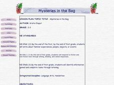 Mysteries in A Bag Lesson Plan